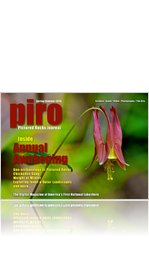 PIRO Journal