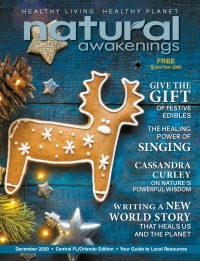 December 2020 Central Florida Natural Awakenings Magazine