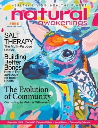 December 2019 Central Florida Natural Awakenings Magazine