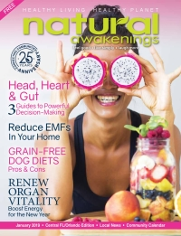 January 2019 Central Florida Natural Awakenings Magazine