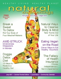 July 2017 Central Florida Natural Awakenings Magazine