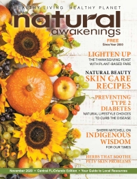 November 2020 Central Florida Natural Awakenings Magazine