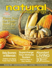 November 2018 Central Florida Natural Awakenings Magazine