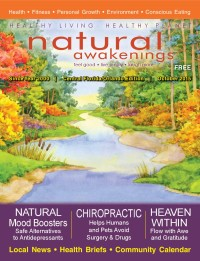 October 2015 Central Florida Natural Awakenings Magazine